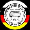 Miami Proud: Unique Collaboration Between Broward Judge And Seminole Tribe Makes Families …