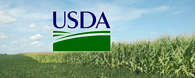 Usda rural housing service section 502 loans idmarch for Usda rural development florida