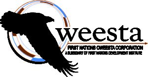 First Nations Oweesta Corporation and Wells Fargo Launch $500,000 Program for Native Americans 8/17/2018
