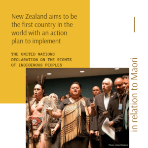 New Zealand aims to be first with UN Declaration on Rights of Indigenous Peoples plan 2/27/2019