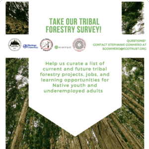 Take this 10 minute survey to help us connect native youth and underemployed adults with opportunities in tribal forestry.